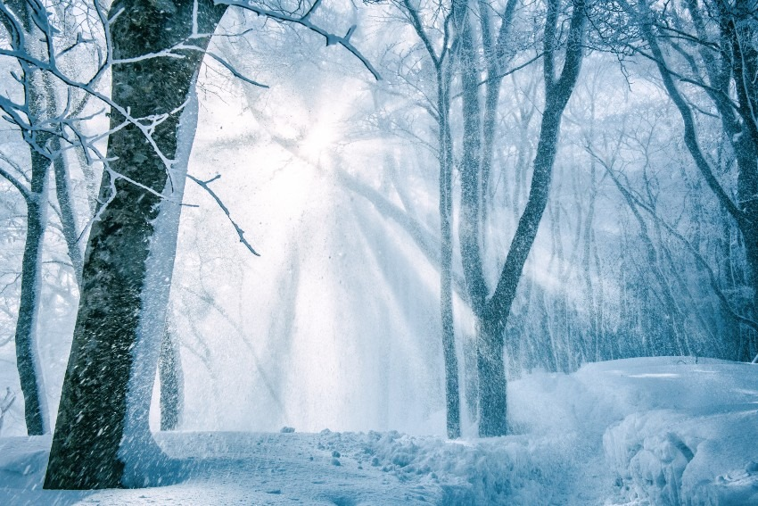 雪景色に差す光